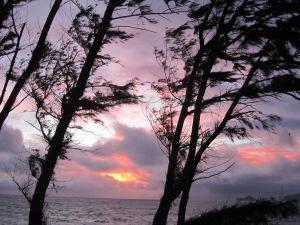 Sunrise @ Bellows 1-1-13 3