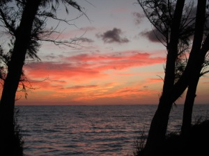 Sunrise @ Bellows 1