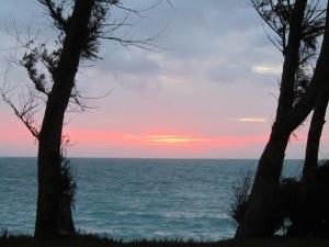 Sunrise @ Bellows 12-24 1