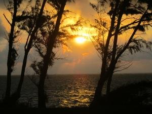 Sunrise @ Bellows 12-31 4